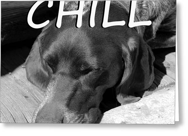 Chill Greeting Card by David Lee Thompson