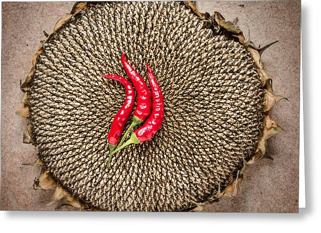 Spice Pyrography Greeting Cards - Chilli and sunflower Greeting Card by Andrea Casali