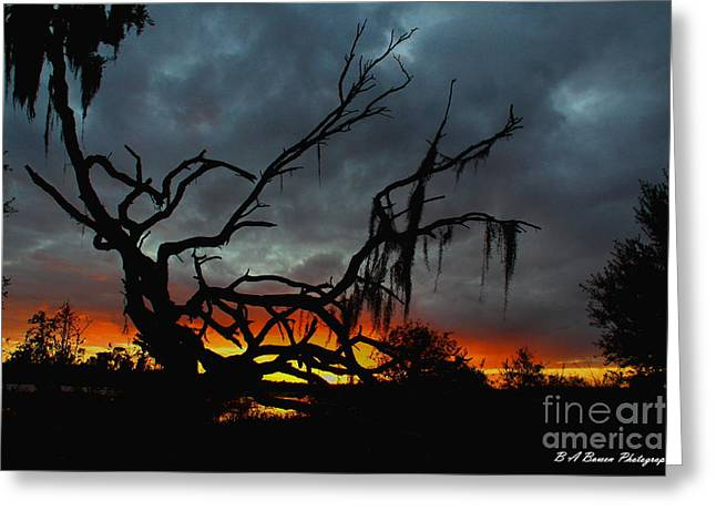 Circle B Bar Greeting Cards - Chilling Sunset Greeting Card by Barbara Bowen