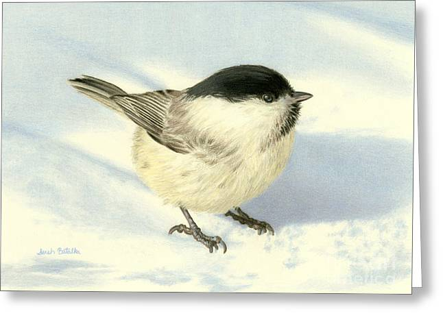Chilly Chickadee Greeting Card by Sarah Batalka