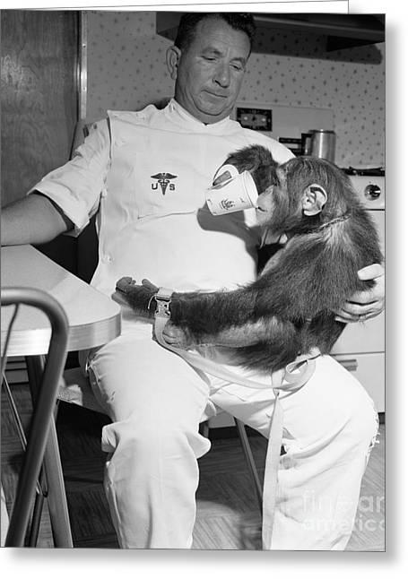 4th July Digital Greeting Cards - Chimpanzee Enos enjoys a nice cuppa after a hard days Astronaut traing Greeting Card by R Muirhead Art