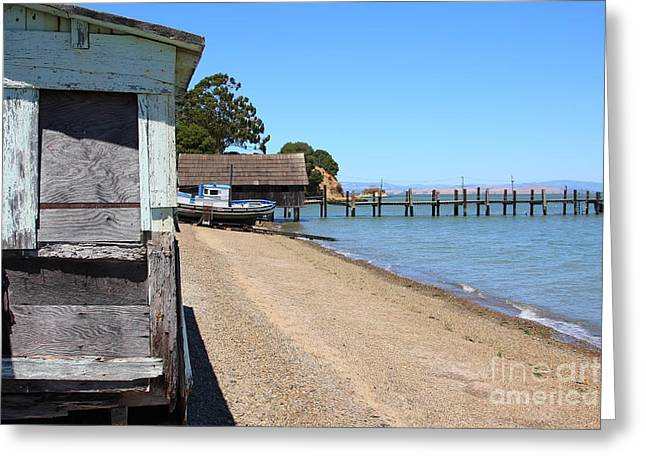 China Beach Greeting Cards - China Camp in Marin CA Greeting Card by Wingsdomain Art and Photography