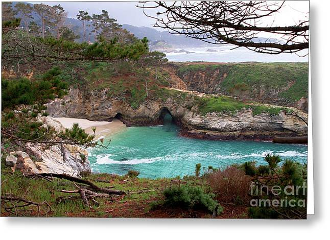 Recently Sold -  - China Cove Greeting Cards - China Cove at Point Lobos Greeting Card by Charlene Mitchell