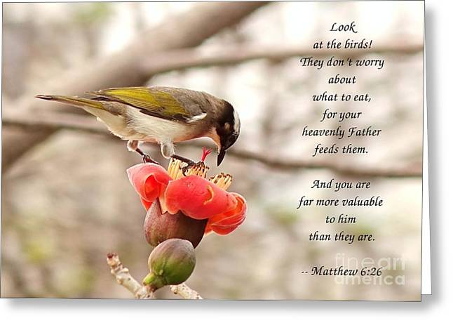 Feeding Birds Greeting Cards - Chinese Bulbul Bird Scripture Card Greeting Card by Yali Shi