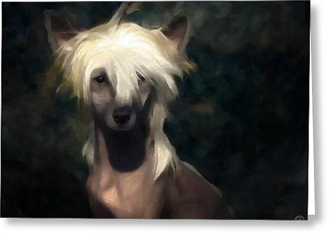 Hairdo Greeting Cards - Chinese crested dog Greeting Card by Gun Legler