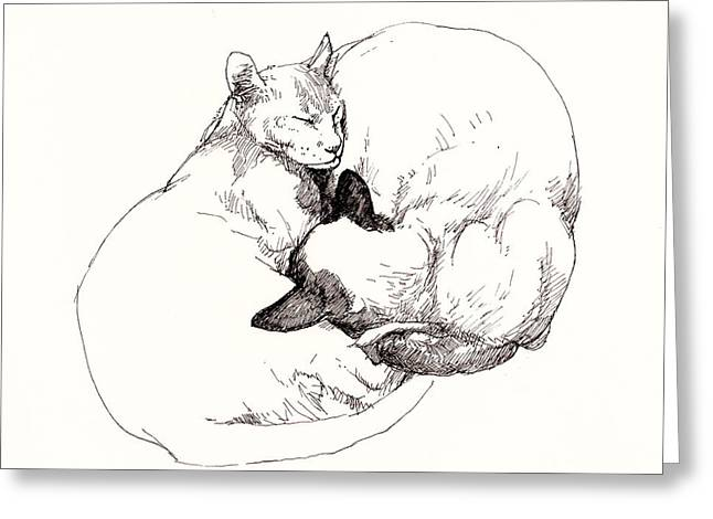 Pussy Drawings Greeting Cards - Chinky and Chang Greeting Card by Roz McQuillan