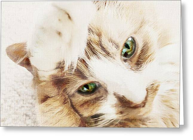 House Pet Greeting Cards - Chip Greeting Card by CJ Anderson