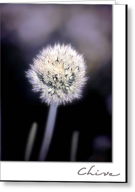 Chives Greeting Cards - Chive Greeting Card by Holly Kempe