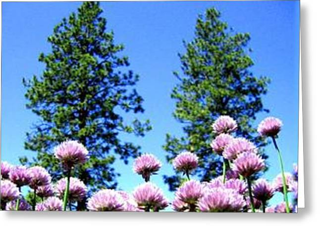 Green Chives Greeting Cards - Chives Alive Greeting Card by Will Borden
