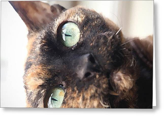 Tortie Greeting Cards - Chloe Greeting Card by Glennis Siverson