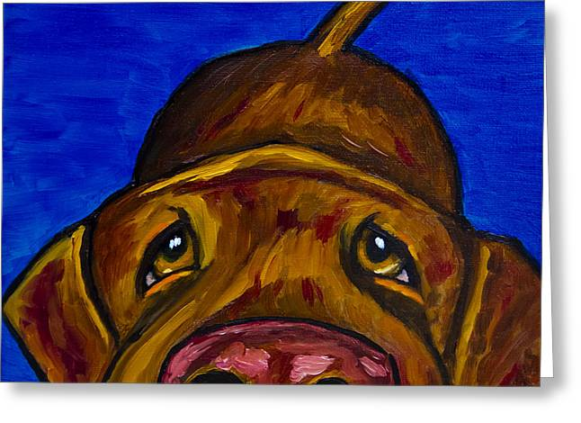 Chocolate Lab Greeting Cards - Chocolate Lab Nose Greeting Card by Roger Wedegis