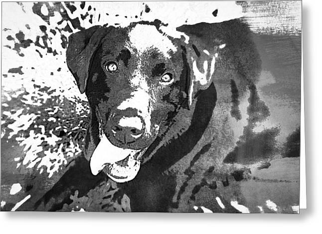 Puppies Photographs Greeting Cards - Chocolate Lab - WCBW Greeting Card by Joye Ardyn Durham