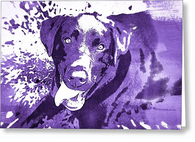 Puppies Photographs Greeting Cards - Chocolate Lab - WCpurple Greeting Card by Joye Ardyn Durham