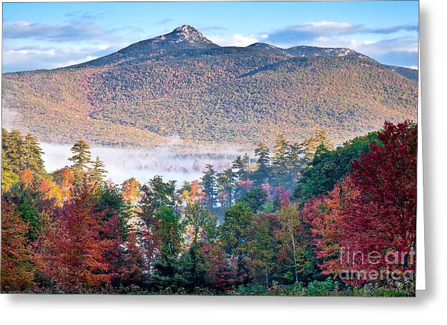 Tamworth Greeting Cards - Chocorua Fall Greeting Card by Susan Cole Kelly