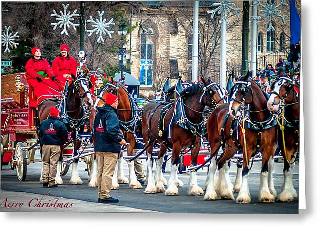 Christmas Clydesdales Greeting Card by Optical Playground By MP Ray