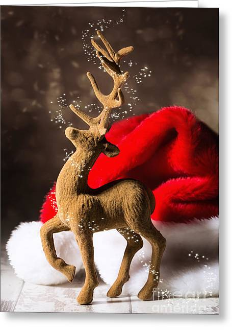 Christmas Reindeer Greeting Card by Amanda And Christopher Elwell