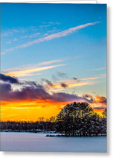 Snow Tree Prints Greeting Cards - Christmas Sunset Greeting Card by Jim Cummings