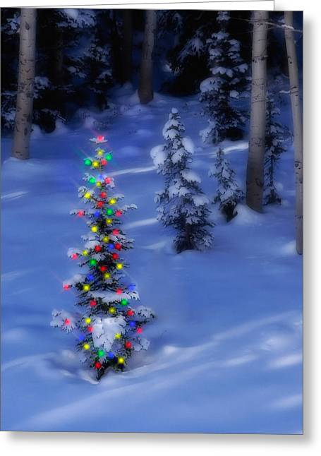 Snowy Evening Greeting Cards - Christmas Tree in Snow Greeting Card by Utah Images