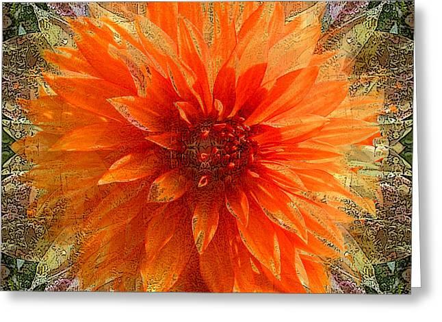 Chrysanthemum Greeting Card by Tom Romeo