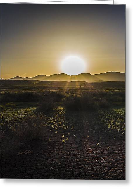 Wildlife Refuge. Greeting Cards - Chupadera National Recreation Trail Greeting Card by Bill Kesler