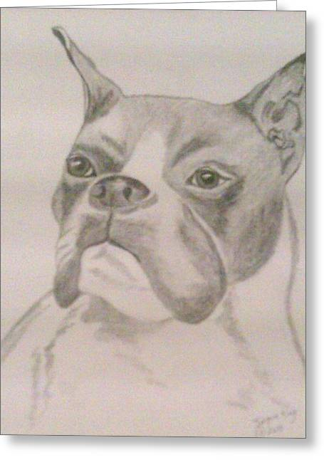 Guard Dog Greeting Cards - Churchill the Warrior Greeting Card by Jacquie King