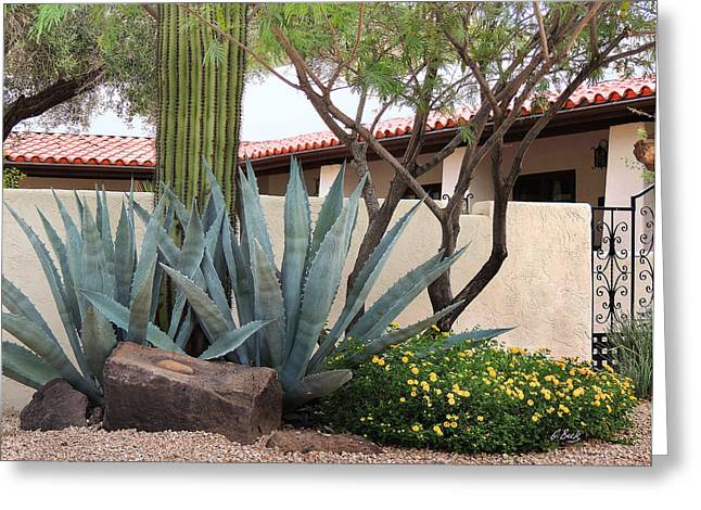 Scottsdale Artist Greeting Cards - Churchyard Agaves Greeting Card by Gordon Beck