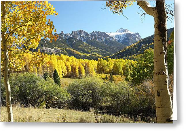 Cimarron Gold Greeting Card by Eric Glaser