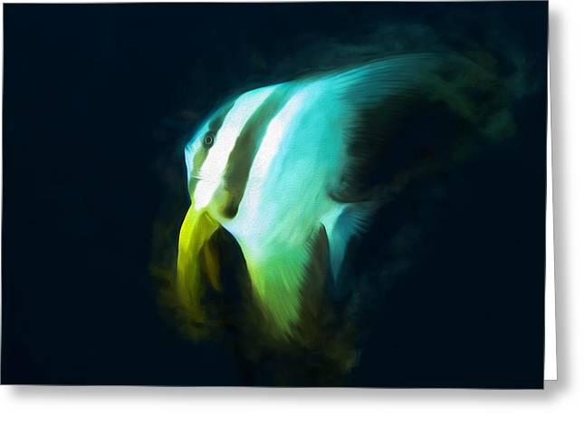Ephippidae Greeting Cards - Circular Spadefish Greeting Card by Roy Pedersen