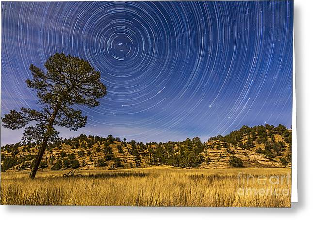 Circumpolar Star Trails Over Mimbres Greeting Card by Alan Dyer