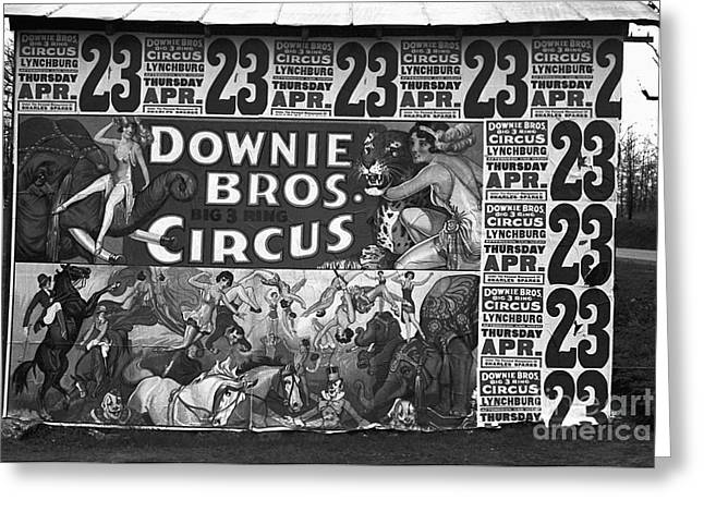 Horse Photographs Posters Greeting Cards - Circus Advertisement, 1936 Greeting Card by Granger