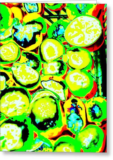 Lemon Art Greeting Cards - Citrus Circles Greeting Card by Sharmaigne Foja