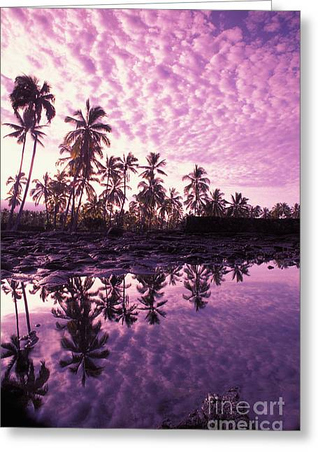 Amazing Sunset Greeting Cards - City Of Refuge (Honaunau) Greeting Card by Carl Shaneff - Printscapes