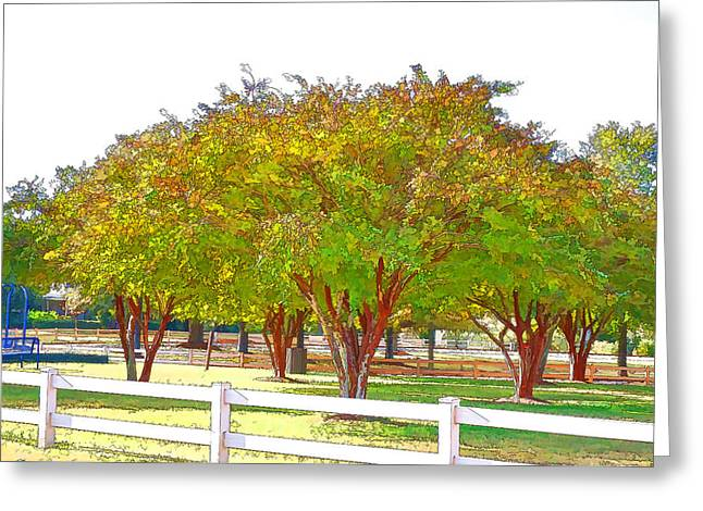 Exposure Paintings Greeting Cards - City Park 9 Greeting Card by Lanjee Chee