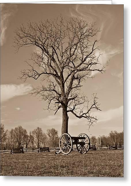 Civil War .tree Greeting Cards - Civil War Cannon Greeting Card by Douglas Barnett