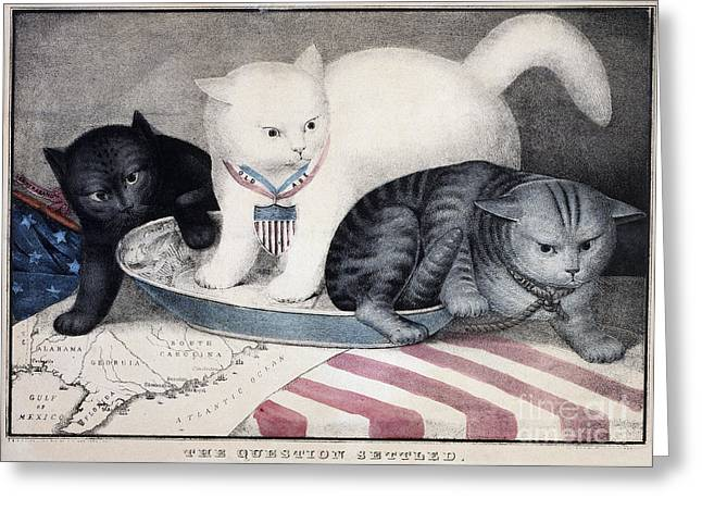 Cat Map Greeting Cards - CIVIL WAR: CARTOON, c1865 Greeting Card by Granger