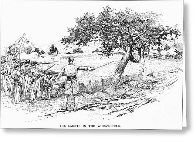 Recently Sold -  - Engraving Greeting Cards - Civil War: New Market Greeting Card by Granger