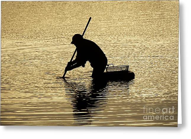 Lobster Fishermen Greeting Cards - Clamming Greeting Card by John Greim