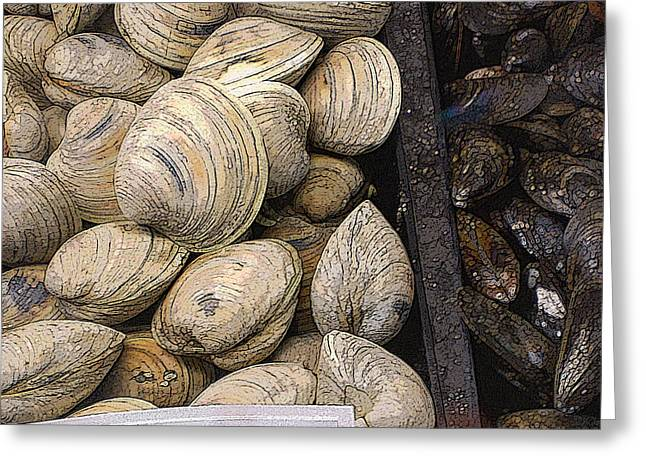 Clam Greeting Cards - Clams and Mussels Greeting Card by Donald Maier