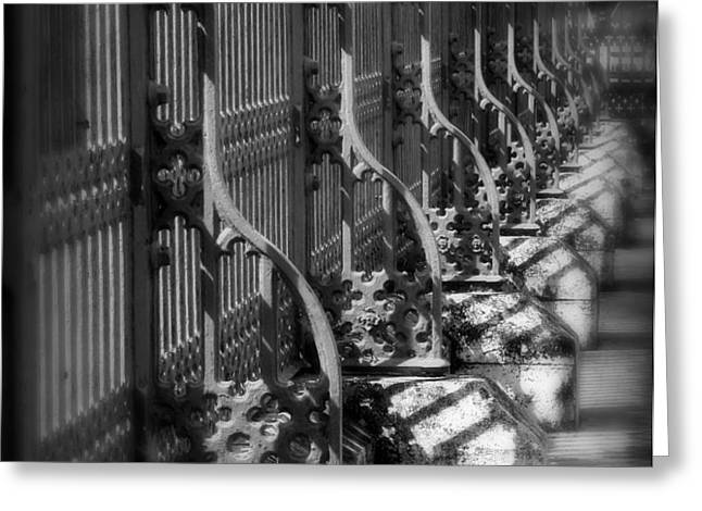 Classic Fence Greeting Card by Perry Webster