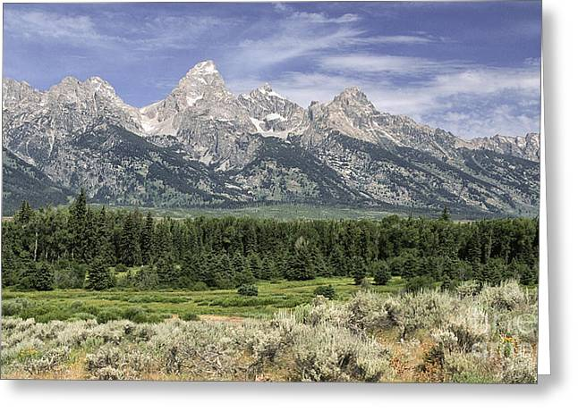 Classic View Of The  Grandtetons Greeting Card by Sandra Bronstein