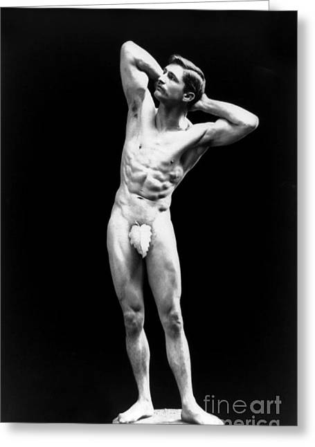 Racy Greeting Cards - Classical Pose, Nude Male Model, 1893 Greeting Card by Science Source