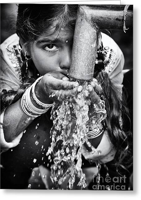 Clean Water Greeting Card by Tim Gainey