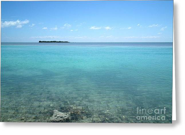 Us1 Greeting Cards - Clear Blue Day Greeting Card by Tammy Chesney