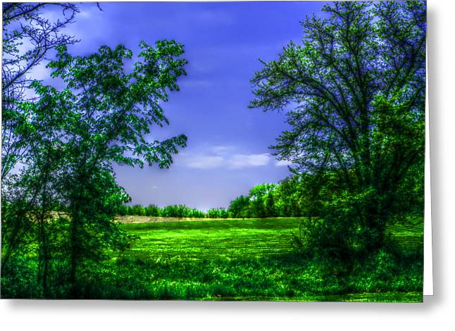 Dmc Greeting Cards - Clear Blue Sky Day Greeting Card by Kevin Lormand