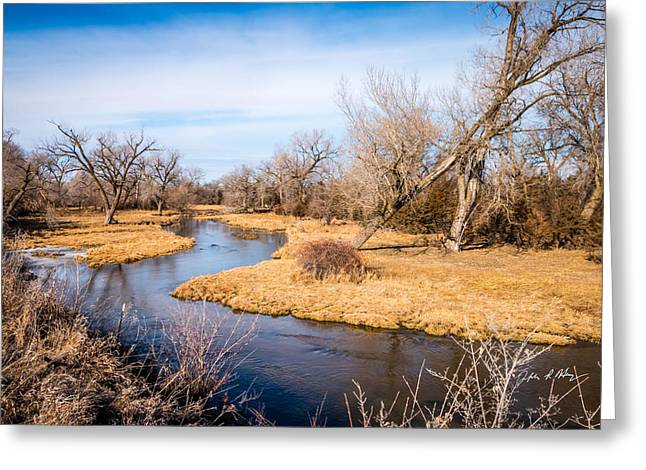 Fall Trees With Stream. Greeting Cards - Clear Creek Greeting Card by Jeffrey Henry