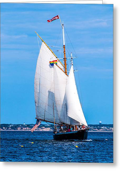 Blue Sailboats Greeting Cards - Clear Sailing Greeting Card by Karen Regan