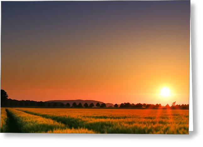 Cornfield Digital Art Greeting Cards - Clear Sunset Greeting Card by Franziskus Pfleghart