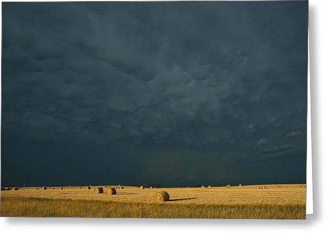 Farmers And Farming Greeting Cards - Clearing Storm In Western North Dakota Greeting Card by Michael S. Lewis