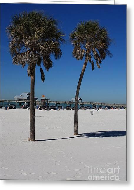 Clearwater Beach Greeting Card by Carol Groenen