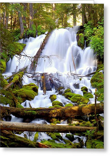 Umpqua River Greeting Cards - Clearwater Falls Greeting Card by Scott Gould